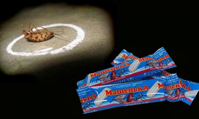 Карандаши от тараканов